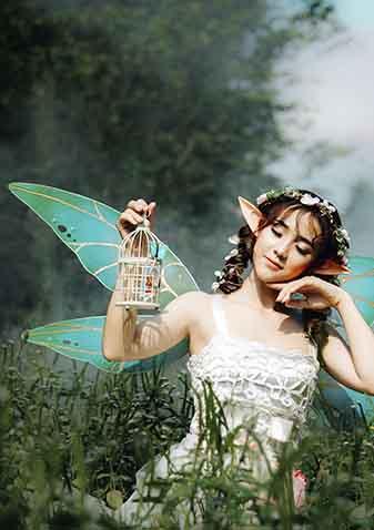 Hermosa Hada con una lámpara en el bosque